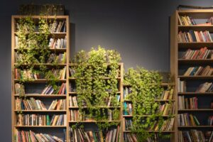 13 Very best Bookshelves You Can Purchase On-line and In reality Need